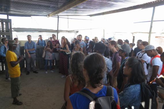 CPUT & Reunion Students visit Lwazi Park.