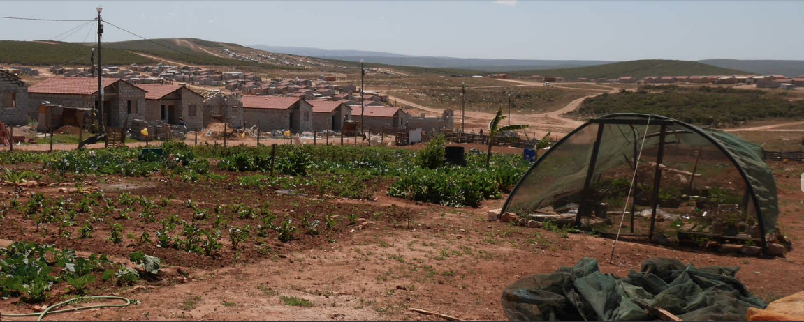 Taken by Saga, in 2016 shows one of the agricultural project in Joe Slovo and incomplete houses.