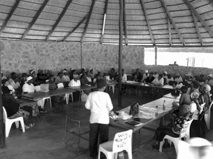 Botswana federation during the UPF group discussion